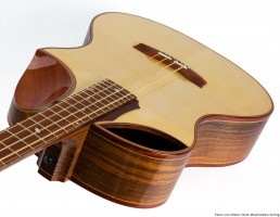Schönitz Gitarren   Walnut back and sides