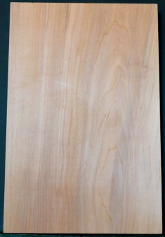 Alder European 1pc body blanks
