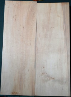 Alder European 2pc body blanks