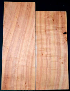 Red Willow 2pc body blanks