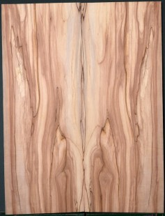 Spalted Apple