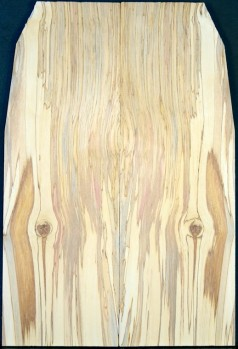 Spalted Birch Top