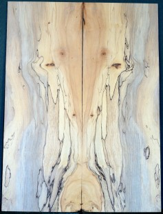 Spalted Maple Top