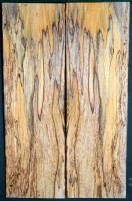 Spalted Beech AAA-4A samples