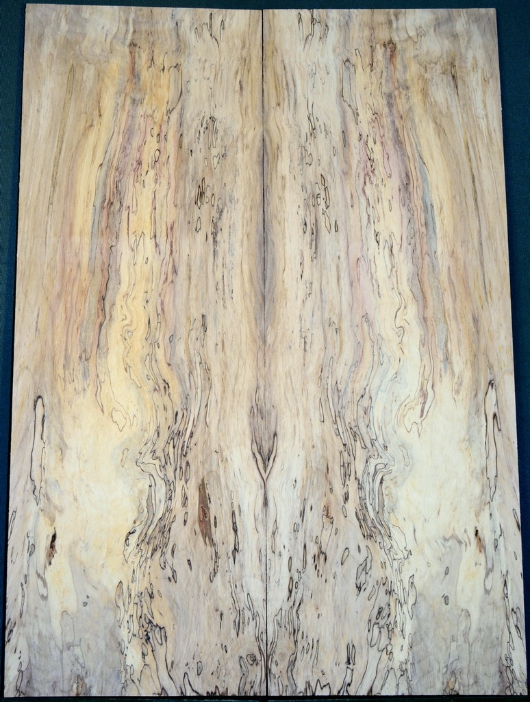 Spalted Maple Spalted Maple Guitar Top Electric Guitar Wood